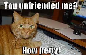 LOLCat Unfriend